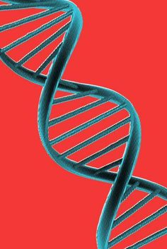 New research that says you can actually inherit your fears through DNA