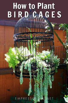 to Make a Birdcage Flower Planter Turn a decorative old bird cage into a wonderful planter for flowers or succulents.Turn a decorative old bird cage into a wonderful planter for flowers or succulents. Basket Planters, Flower Planters, Planter Ideas, Hanging Baskets, Fall Planters, Garden Planters, Succulent Hanging Planter, Rockery Garden, Sloping Garden
