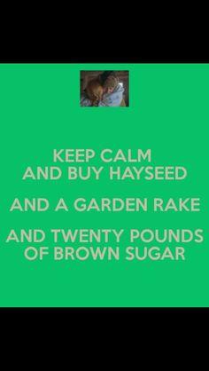 Anne of green gables humor
