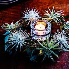 28 festive winter arrangements | Tabletop wreath | Sunset.com