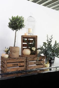 wooden crate/box. caja de madera. wedding. boda. decoration. decoración. candles. velas. jaula. birdcage plants. plantas