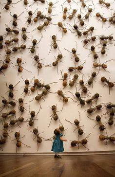Invasive Ant Art Installations by Rafael...