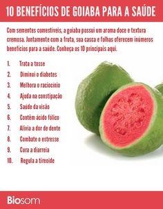 Clique na imagem e veja os detalhes dos 10 benefícios de goiaba para a saúde.  #goiaba #fruta #fruto #alimento #alimentação #alimentaçãosaudável #saúde #bemestar
