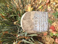 Lucy's Grave. Fayetteville Arkansas. Small historical cemetery, east of confederate cemetery. This part of the country has countless small cemeteries.   But she is in her grave.  And oh, the difference is to me.