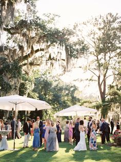 Cocktail hour on the lawn with umbrellas, legare waring house charleston sc wedding Southern Weddings, Romantic Weddings, Our Wedding Day, Dream Wedding, Beauty And Beast Wedding, Wedding Pastel, Wedding Blush, Wedding Colors, Charleston Sc