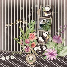 Layout using {All About Love: Panda} Digital Scrapbook Collection by Paty Greif  available at Pickleberrypop https://www.pickleberrypop.com/shop/product.php?productid=46553&page=1 #patygreif