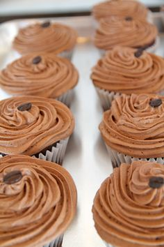 Gluten-Free Chocolate Cupcakes at Cloud 9 Specialty Bakery in New Westminster (Vancouver), BC