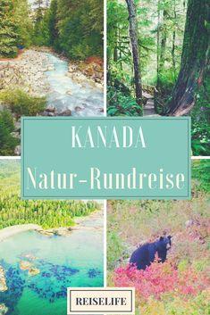 Kanada Rundreise: Zwei Wochen von Vancouver über Vancouver Island nach Toronto. Kanada Reise von Reiselife!
