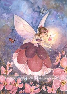 art sugar plum fairy images | Plum Blossom Fairy by *JoannaBromley on deviantART
