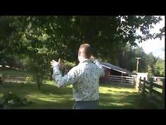 River front Hobby #Farm #Eugene #Springfield 35240 MCKENZIE VIEW #Oregon...