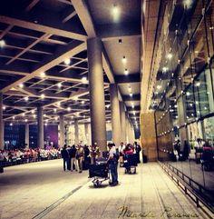 #t2 #mumbaiairport #mumbai #beautiful #scale #peacock