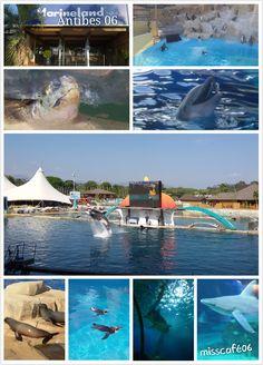 Marineland :  Parc d'attraction  d'Antibes  06