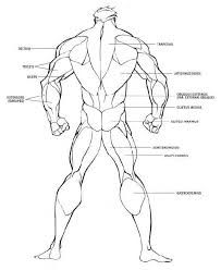 Image result for how to draw back