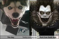 This dog... Totally Looks Like Ryuk from Death Note