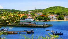 Top 5 Unknown Paradises on Terra... Vieques Island, Puerto Rico. Mi Isla del Encanto!!