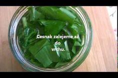 Jak si připravit tinkturu z medvědího česneku Pickles, Cucumber, Food, Syrup, Essen, Meals, Pickle, Yemek, Zucchini