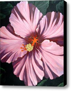 pink hibiscus painting on black canvas