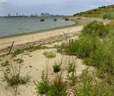 The view of Boston from Spectacle Island.