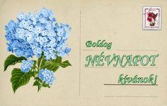Névnap - jolka.qwqw.hu Wedding Photography, Cards, Maps, Wedding Photos, Wedding Pictures, Playing Cards