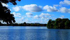 Glance across Damhussøen to Rødovre.