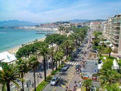 What's new - Festival de Cannes 2014 by thetoptier, via Flickr