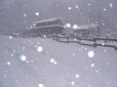snowstorm in mountains | Photo from the peak of the snow storm on Friday at Foxfire Cabin here ...