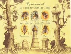 Temperate Climate Permaculture: Introduction to Beekeeping