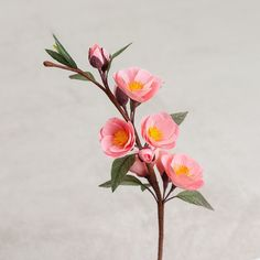 Pink Blossoming Twig - Paper Flowers - Anniversary - Paper Flower - Paper Decor - Crepe Paper Flowers - Office Decor - Home Decor - Sakura Botanical Flowers, Flowers Nature, Real Flowers, Beautiful Flowers, Tissue Paper Flowers, Fabric Flowers, Flower Paper, Cactus E Suculentas, Illustration