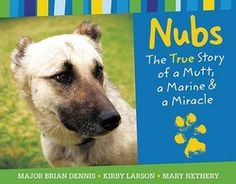 Nubs: The True Story of a Mutt, a Marine & a Miracle, by Major Brian Dennis. How a US Marine befriended a homeless dog in Iraq, and succeeded in bringing him home to the US to join his family. Read more about it here:  http://bookpage.com/reviews/4003-major-brian-dennis-nubs-true-story-mutt-marine-miracle#.U96ambd0z5o