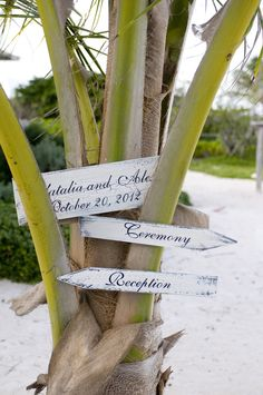 Signs again #fiji #tourismfiji #Myperfectweddinginfiji