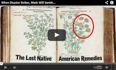 Discover the lost remedies used by our ancestors for centuries. And I'm not talking about rare and complicated insights that only a botanist knows. I'm talking about plants that grow in your backyard or around your house. Very common weeds.
