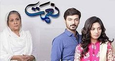 Naimat Episode 23 Ary Digital 19th December 2016