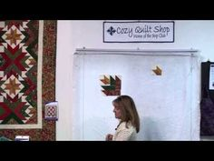 ▶ Winter Solstice - Strip Presentation by Cozy Quilt Designs - YouTube....at the end of the video, I prefer the other quilt colors