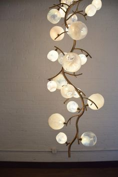 Lucia Luxe Light Home