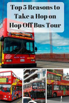 Why you should take a Hop On Hop Off Bus Tour when you are traveling. #travel #vacation #bus asoutherntraveler.com