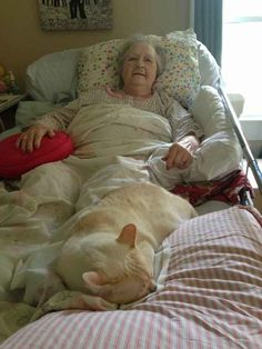 Her constant companion. | 37 Pictures That Prove Cats Have Hearts Of Gold