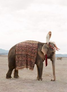 Beauty and The Elephant Everyone should ride one of these majestic creatures