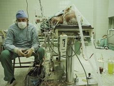 1. A surgeon rests after a performing a successful heart transplant operation that lasted 23 hours. His assistant sleeps in the right corner.