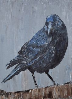 The Common Crow. Oil on Canvas, 12 X 16 Common Crow, Crow Art, Oil On Canvas, Projects To Try, Paintings, Bird, Artist, Animals, Image