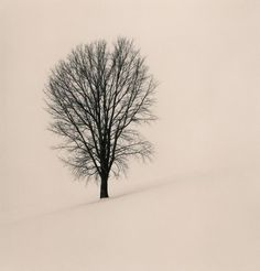 Silent World by Michael Kenna. Absolutely beautiful pictures