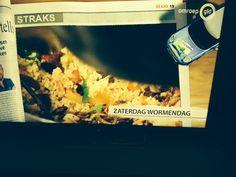 opname omroep gelderland, 20-02-2016 koken met insecten met Harm Edens