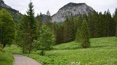 Die #Rundwanderung vom #Tegelberg zur #Ahornspitze führt über die #Bleckenau zurück zum Ausgangspunkt, hält für #Allgäu-Urlauber in #Füssen-#Weißensee abwechslungsreiche #Impressionen innerhalb einer traumhaften #Bergwelt bereit. Bis auf den Aufstieg zur #Ahornspitze, der etwas Trittsicherheit erfordert, hat diese ca. 11 Kilometer lange Tour einen leichten Anspruch und eignet sich für jedermann mit ausreichender Kondition…