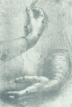 Pour apprendre à dessiner la main de Léonard de Vinci