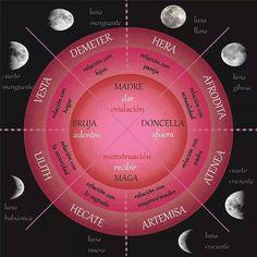 Ciclo menstrual - lunar.jpg
