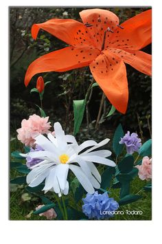 #fiori giganti di #cartacrespa #crepepaper #flowers