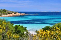 Türkis-blaues Wasser und Traumstrände auf Sardinien! #Strand #Sommer #Sonne #Beach ©The Photos - Fotolia