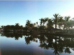 On instagram by hermoso_sinaloa #landscape #contratahotel (o) http://ift.tt/1Urhq5n #altatanavolato #altatanavolatosinaloa #altatasin #sinaloa #sinaloa #sinaloamx #visitsinaloa #visitmexico #paraiso #traducion #paisajes #arte #comida #soloensinaloa #siguemeytesigo #dalemegusta #megustapormegusta #like4like #follow4follow #likelikelike #tbt #instapic #instamotivation