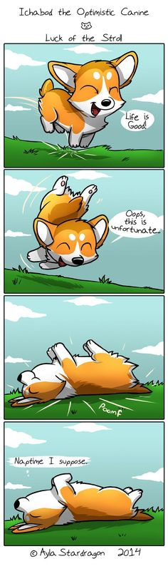 Optimistic Corgi. Oops, this is unfortunate.
