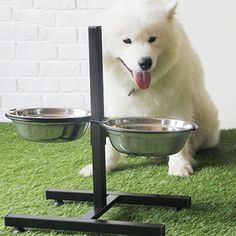 Adjustable height double #diner food #feeding pet dog #bowls stand stainless stee,  View more on the LINK: http://www.zeppy.io/product/gb/2/122221288956/