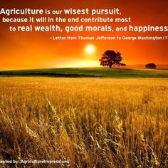 Agriculture is our wisest pursuit, because it will in the end contribute most to real wealth, good morals, and happiness. -Letter from Thomas Jefferson to George Washington Summer Beach Quotes, Summer Sunset, Farm Quotes, Life Quotes, Farm Sayings, Mentor Quotes, Country Quotes, Wisdom Quotes, Thats The Way